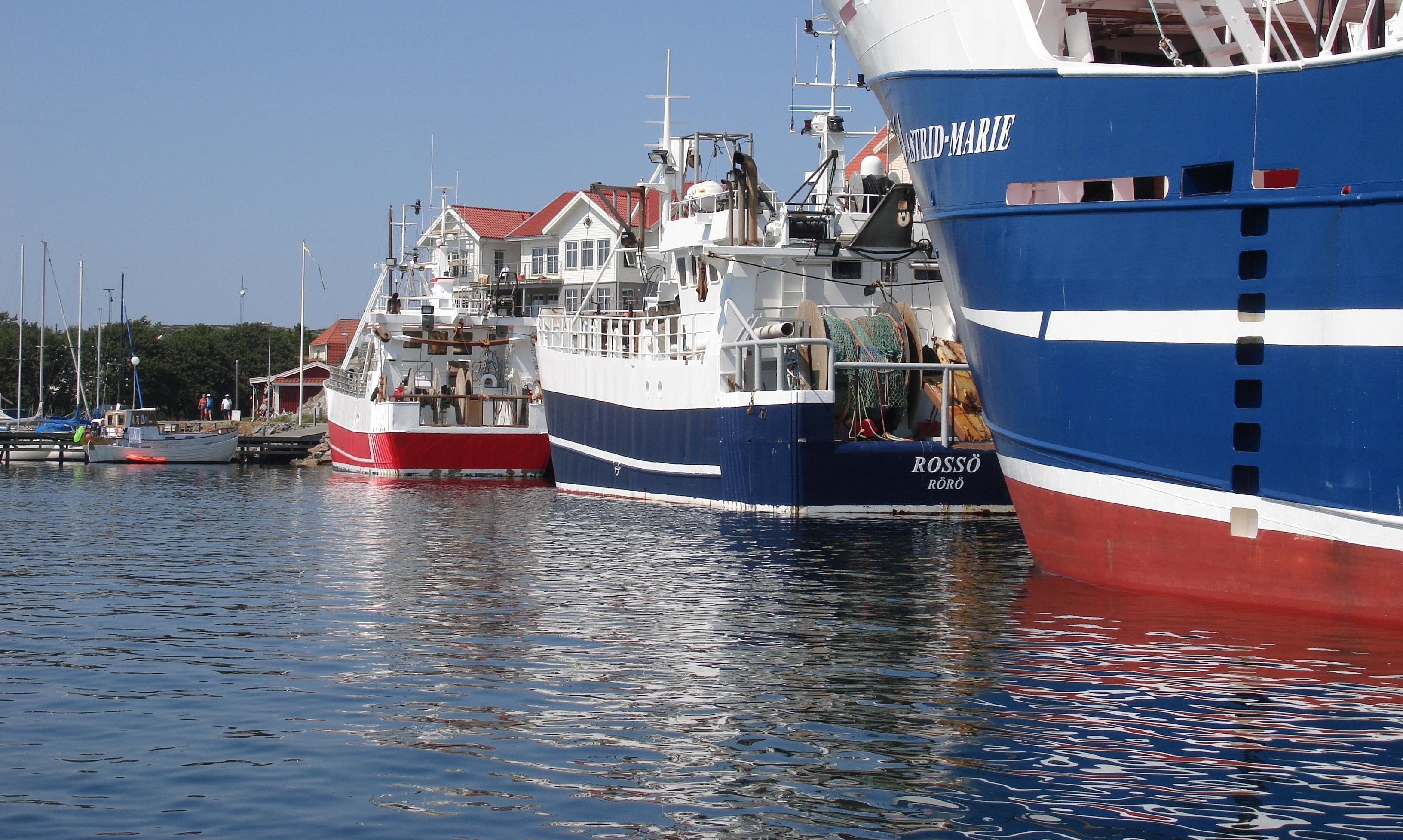 (2) bild - rörö fiske.jpg