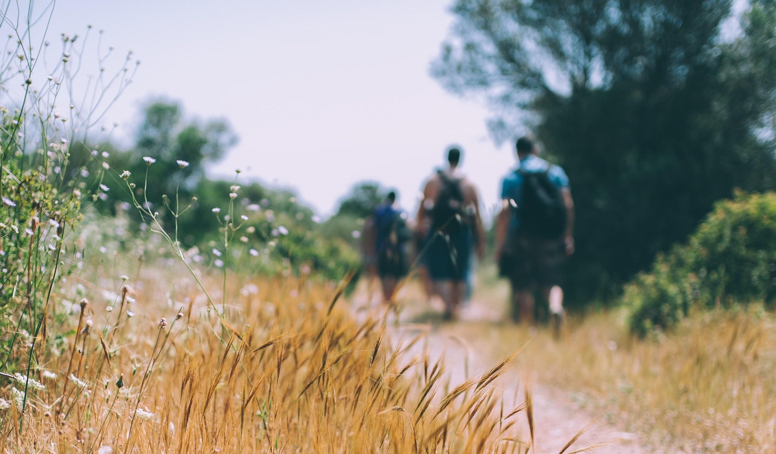 vandra promenad killar motionsspår stig väg gräs sommar.jpg